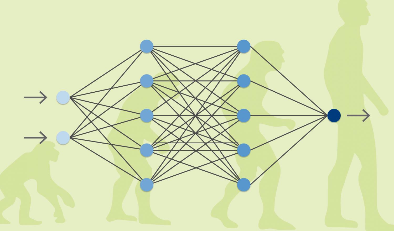 Evolution of man compared to Neuroevolution