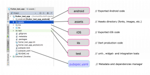 An example Flutter project structure in the IDE