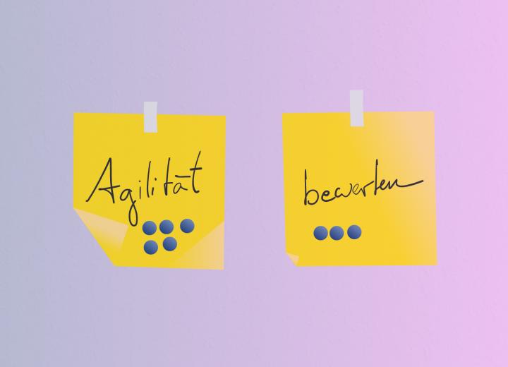 Agilität bewerten: Grundsätzliche Fragen und Herangehensweisen