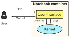 Depiction of A traditional notebook setup: kernel running within the notebook container.