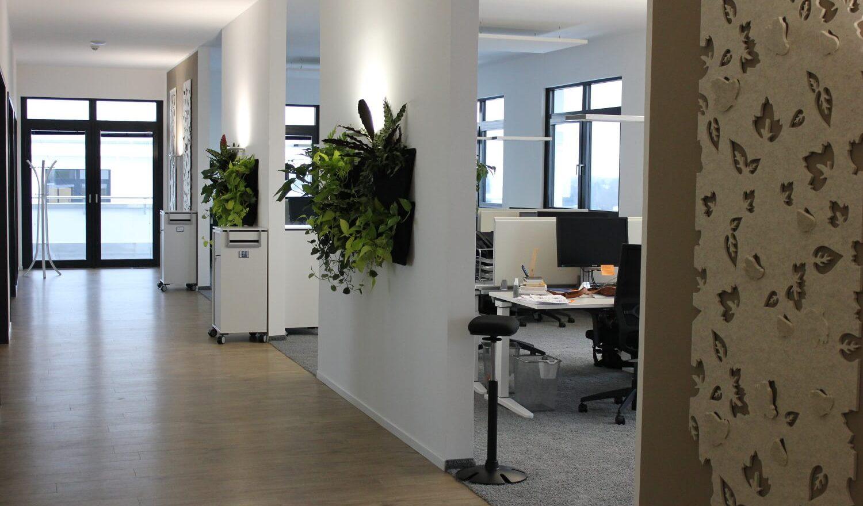 Großraumbüro im Office Hamburg